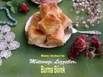 Burma Börek (görsel)