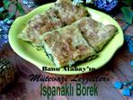 Ispanakl� B�rek (g�rsel)